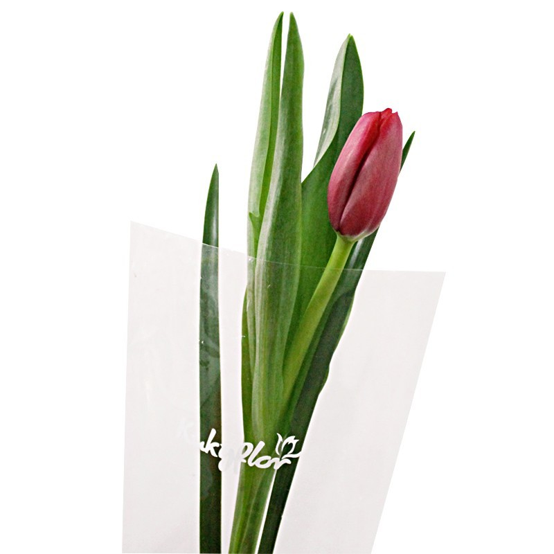 1 tulip bouquet