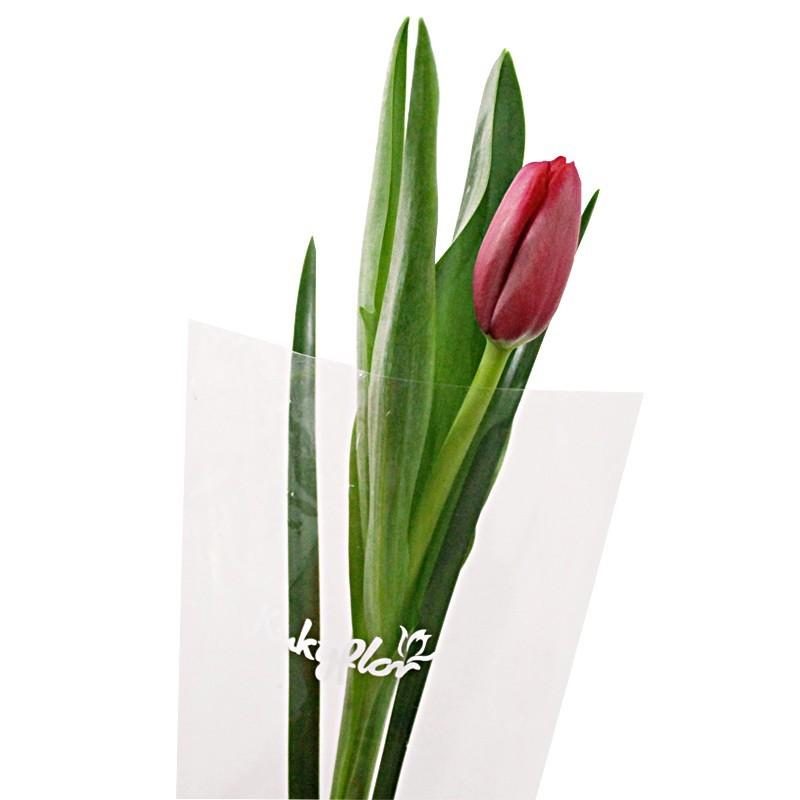 Ramo de 1 tulipan