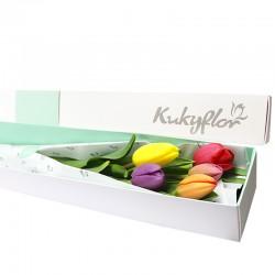 Caja 5 Tulipanes Variados