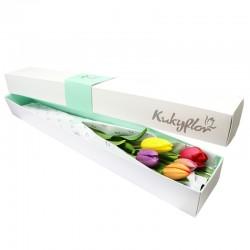 Caja de 5 Tulipanes