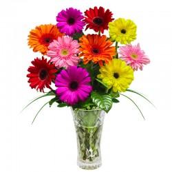 Vase 10 Gerberas Varied