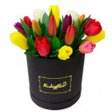 Box de 20 tulipanes