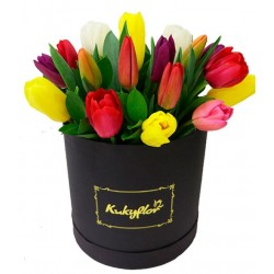 Box 20 Assorted Tulips