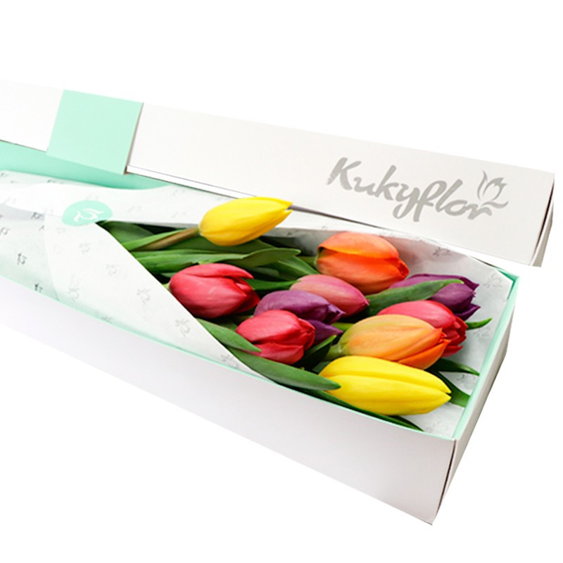 Caja 10 Tulipanes Variados