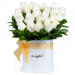 Box of 24 White Roses