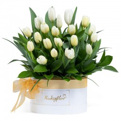 Box con 20 tulipanes blancos