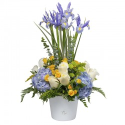 Arrangement with roses, irises, mini roses and hydrangeas.