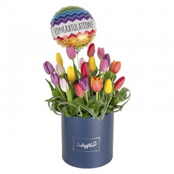 Box de graduación con 20 tulipanes variados y globo de graduación