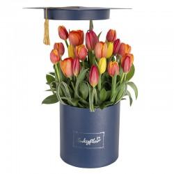 Box de graduación con 20 tulipanes variados