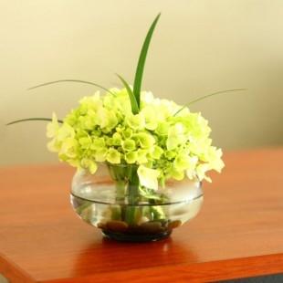Kukyflor cuidado de las hortensias - Cuidado de las hortensias ...