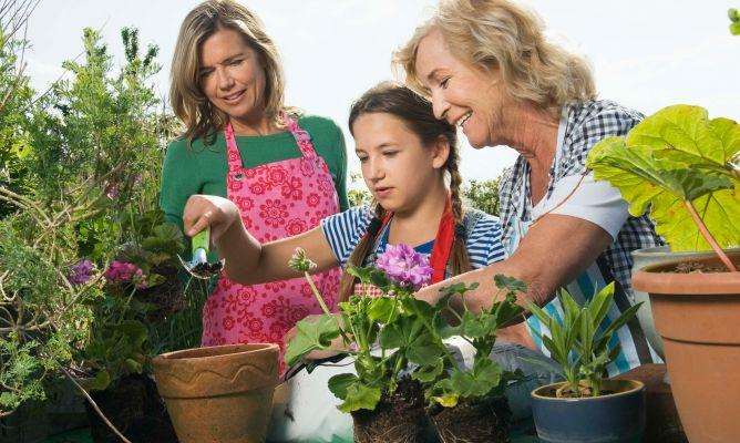 Kukyflor ense a a los ni os a cuidar las flores y el - Como cuidar un jardin ...