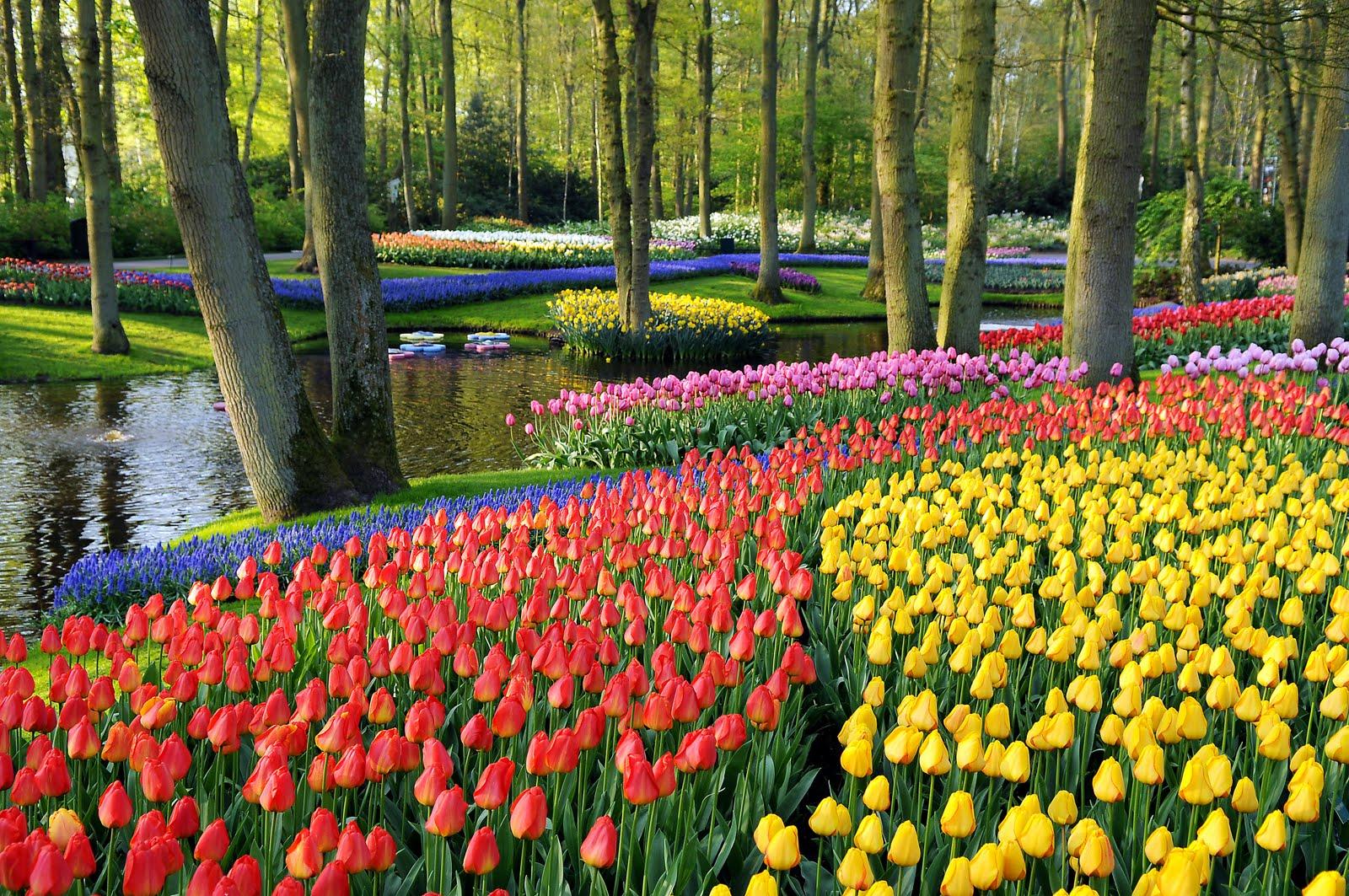 kukyflor los jardines m s famosos del mundo
